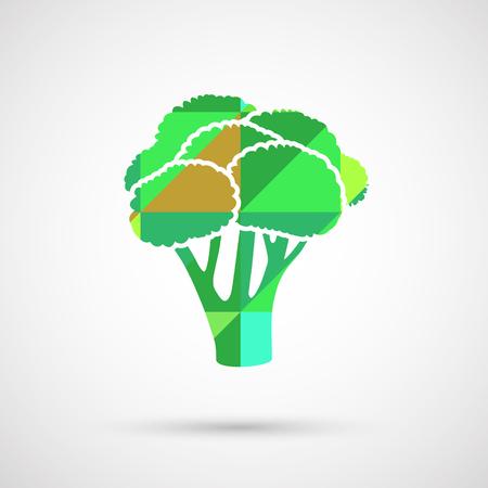 Illustratie van een vers groen stuk broccoli