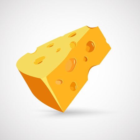 Vector illustration of a piece of cheese. Isolated on white back Illustration