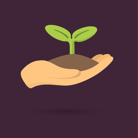 Human hands holding sprout