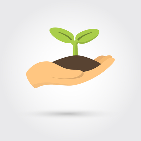 Human hands holding sprout Illustration