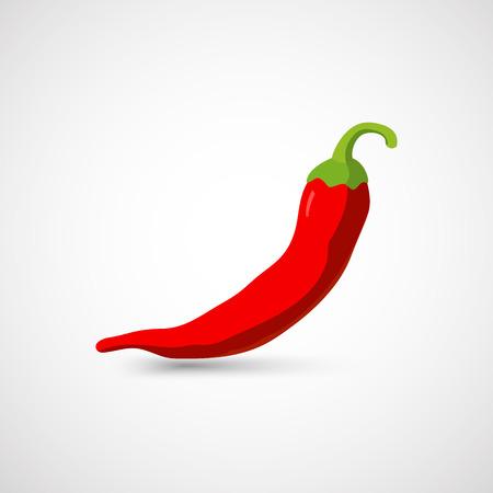 Chili pepper. Vector illustration
