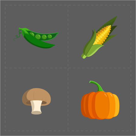 Colorful Vegetable Icon Set on Grey Background 向量圖像