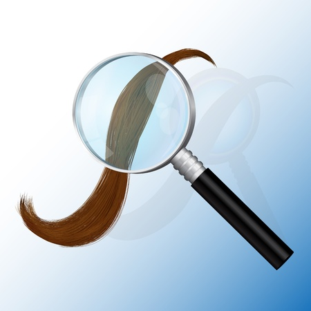 examine: magnifying glass, examine hair, split ends, Hair Care