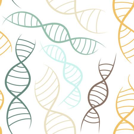 formación científica, sin patrón, con el ADN, la espiral genética