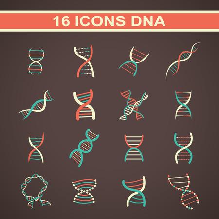 adn: ADN Icon, un juego de estilo diferente de científicos iconos con espiral del ADN