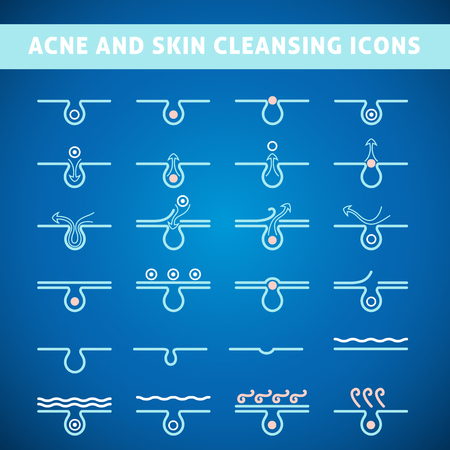 whelk: icon acne, schematic view of a skin care, problem skin with acne in section