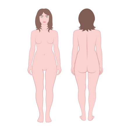young girl nude: vector girl on a white background, front and back without clothes, woman in full growth