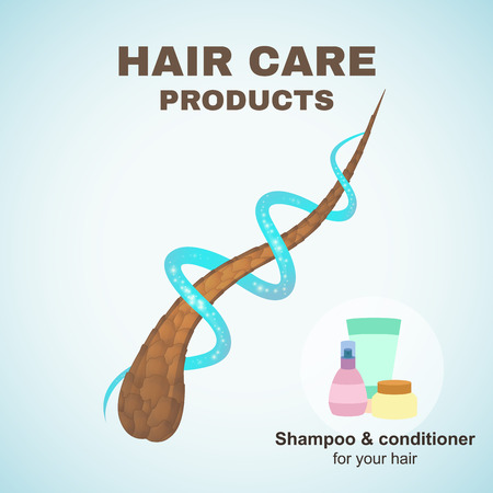 Hair care Illustration