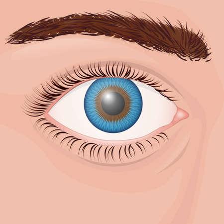One human eye close up with blue iris