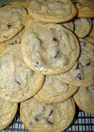 chocolate chip: fresh baked chocolate chip cookies