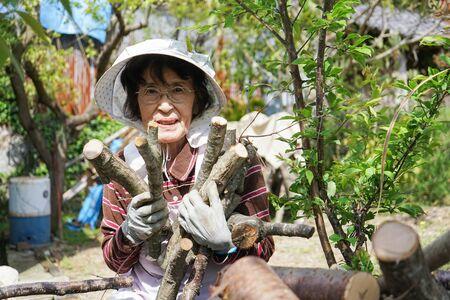 Elderly woman chopping firewood