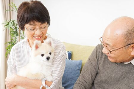 Aged couple having a dog