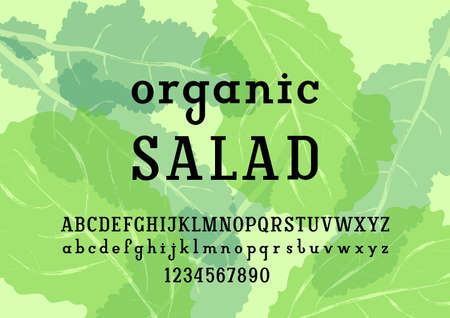 Modern slab serif font, original regular alphabet, trendy uppercase and lowercase letters from A to Z and numbers from to 9, vector illustration