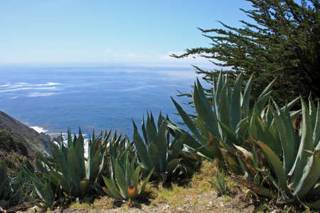 View from Pacific Coast Highway
