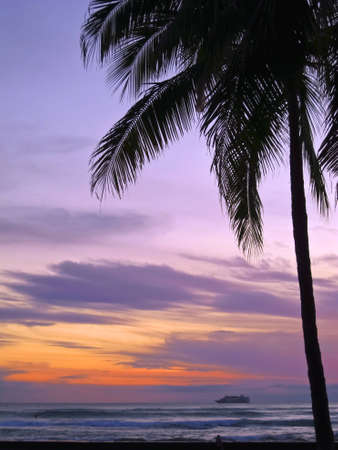Palm tree in back light during sunset with cruise ship at horizon Stock Photo - 11345361