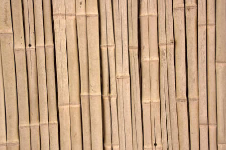 Background made of Bamboo Stock Photo