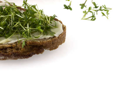 A bread with butter and fresh cress with sprouts in background photo