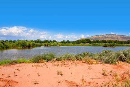Little lake at Rio Grande Nature Center State Park