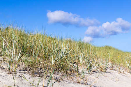 View up a hill at the beach with grass towards blue sky with single clouds Stock Photo