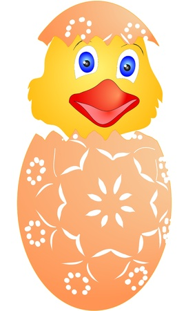 Easter chicken just hatched from eggs - suitable for greeting cards, or as  further treatment Vector