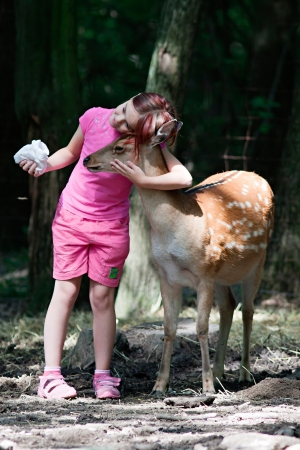 Photo of a young girl feeding sika deer and hugs him photo