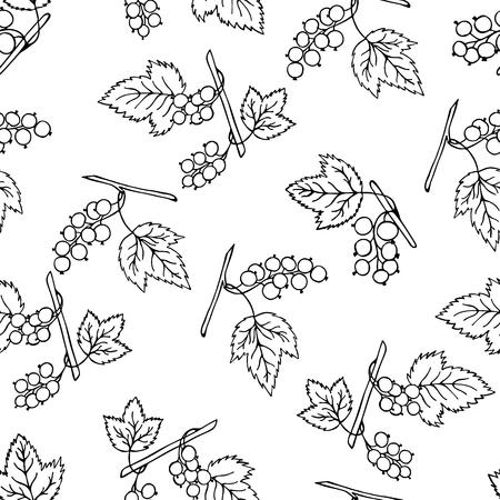 Black currant  seamless pattern. Illustration