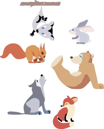 possum: set of animals isolated on white background