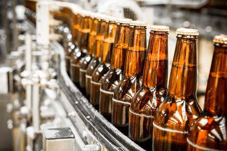 cinta transportadora: Botellas de cerveza en la cinta transportadora, la cervecería