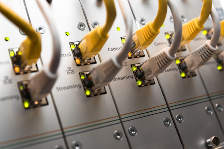 Network switch and UTP ethernet cables photo