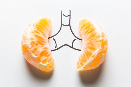 een nier concept, twee mandarijnen en tekenen Stockfoto