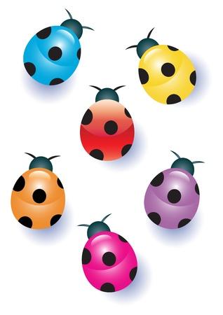 Multicolored Ladybugs