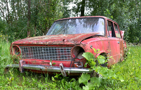 Old car wreck on field surrounded by vegetation  photo