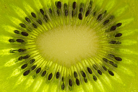 Macro closeup in the middle of a kiwi center Stock Photo - 9242282