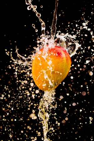 fresh taste: Mango splashing over clear water on black background