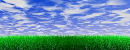 Green color grass illustration on blue sky Stock Illustration - 10652485