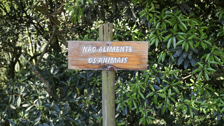 Wood sign do not feed wildlife in brazilian portuguese