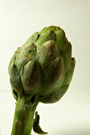A artichoke is displayed on a plain background.