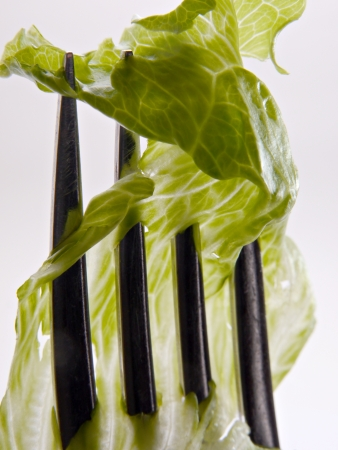 A piece of lettice is struck on a upright fork.  Stock Photo
