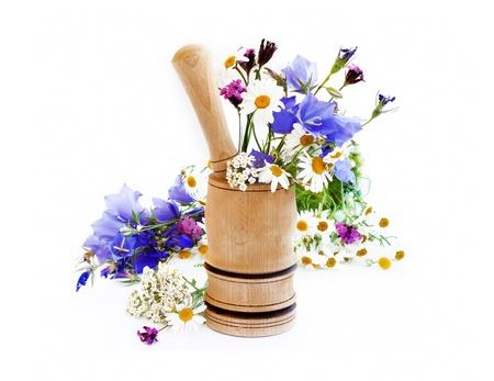 Herbs Stock Photo - 20481600