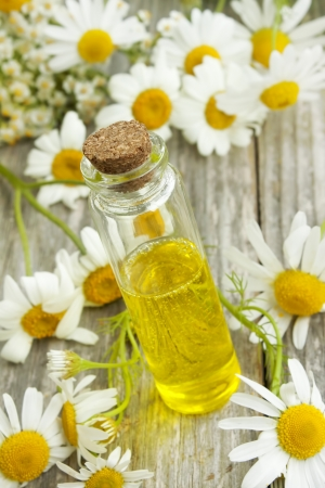 Chamomile essence and flowers photo