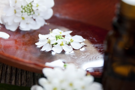 l natural: delicate white spa flowers floating on the water,spa concept Stock Photo