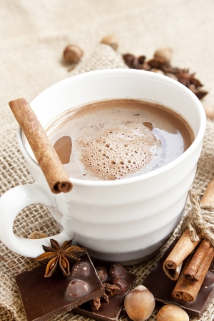 hot chocolate cup with cinnamon sticks,anise and hazelnuts photo