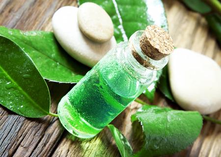 Etherische olie Bottle.Tea Tree Essence voor Aromatherapie Stockfoto