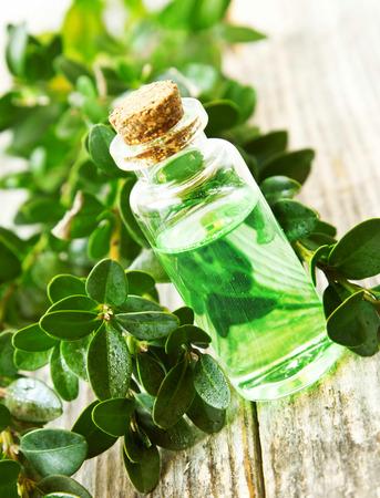 Herbal etherische olie fles voor Aromatherapy.Green Essence Extract