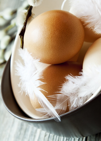 Easter Eggs in Bowls with Delicate White Feathers Closeup photo