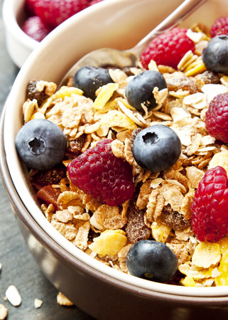 dry fruit: Muesli Bowl for Breakfast with Blueberries and Raspberries