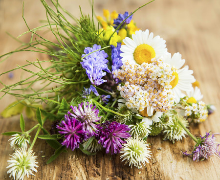 alternative: Healing Herbs for Alternative Natural Medicine and Therapy