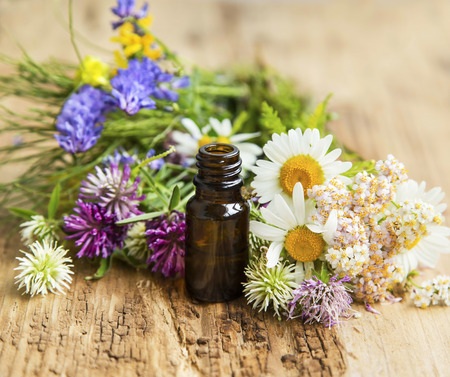 alternative wellness: Essential Oil with Natural Herbs , Alternative Medicine Stock Photo