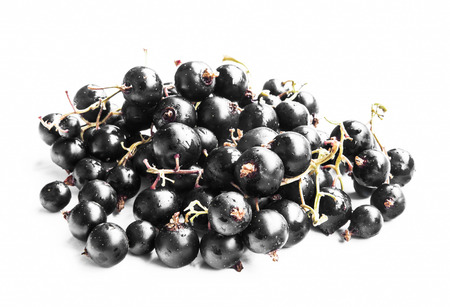 black berry: Black Currants Berry Fruits Isolated on White