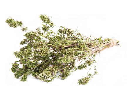 culinair: Tijm Culinair aromatische kruiden bos geïsoleerd Stockfoto